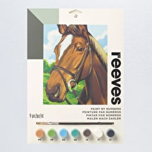 Reeves Paint by Numbers Medium Sets